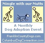 Mingle with our Mutts